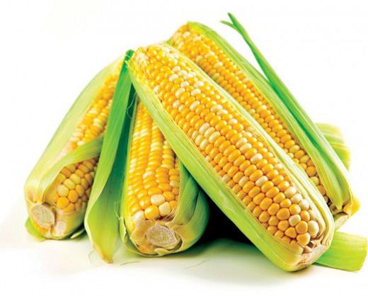 Maize Production Technology Manual_Jan 2014